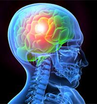 illustration of a human brain glowing