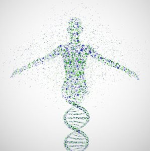 a dna double helix transitions into a human figure