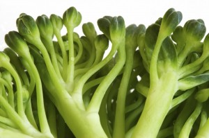 Close-up photo of broccoli sprouts.