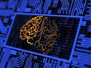 brain image on a computer digital screen