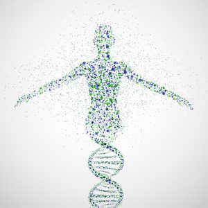a dna double helix fades into a human shape