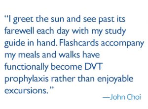 "quote: ""I greet the sun and see past its farewell each day with my study guide in hand. Flashcards accompany my meals and walks have functionally become DVT prophylaxis rather than enjoyable excursions."""