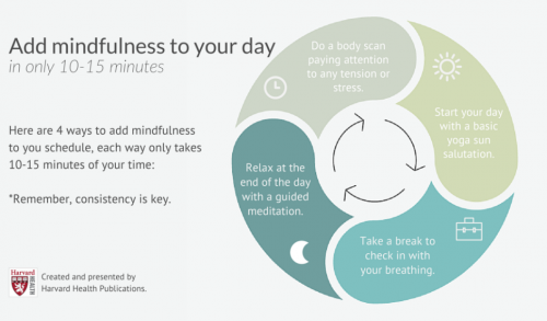 adding just 10-15 minutes of mindfulness to your day can make a significant impact on your stress levels. Try strategies like starting your day with a basic yoga sun salutation, taking a break to check in with your breathing. Doing a body scan paying attention to any tension or stress and relaxing at the end of the day with a guided meditation.