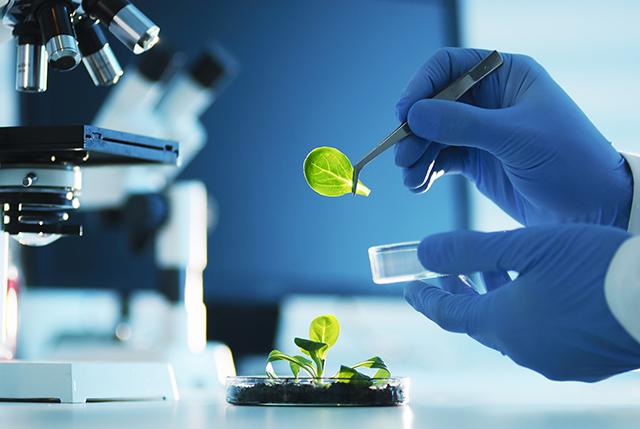 biotechnology iStock 169999232_640