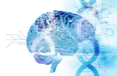 brain dna iStock 645612618