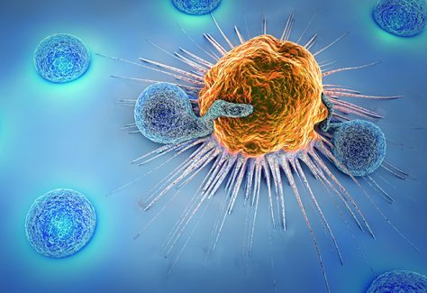 A 3D illustration of a cancer cell and lymphocytes.
