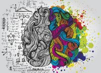 Left- vs. Right-Brained: Why the Brain Laterality Myth Persists