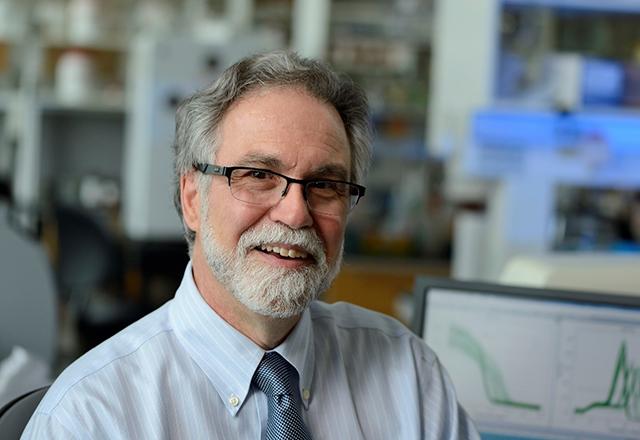 A portrait of Dr. Gregg Semenza.