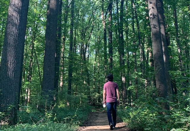 Howard walks alone on a path through a forest.