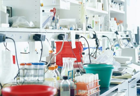 A lab counter is cluttered with various vials, buckets, and equipment.