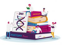 An illustration of medical interns studying while sitting atop a giant stack of books.